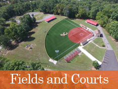 Fields and Courts