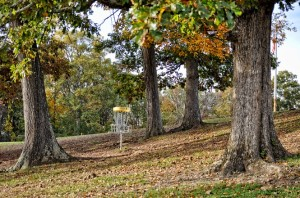 18 Hole Disc Golf